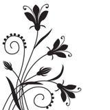 Kwiatu tło Zdjęcia Royalty Free