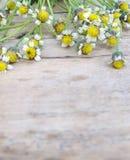 Kwiatu tło na drewnianej podłoga Fotografia Royalty Free