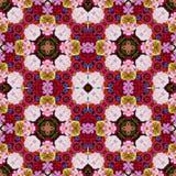 Kwiatu tło odgórny widok obraz royalty free