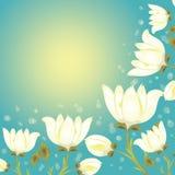 Kwiatu tło Obraz Royalty Free