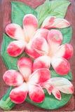 kwiatu tło lub Obrazy Royalty Free