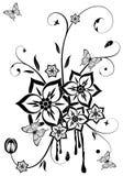 kwiatu temat Zdjęcie Royalty Free