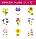 Kwiatu wektorowy projekt Set kwiecista ikona ilustracji
