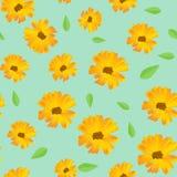 Kwiatu wektoru tło ilustracji