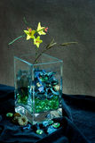 kwiatu wysuszony życie wciąż Obrazy Royalty Free