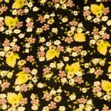 kwiatu wzór na tkaninie Zdjęcia Stock