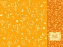 Kwiatu wzór z dekoracyjnymi kwiatami, liśćmi i pole roślinami, Obrazy Royalty Free