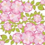 kwiatu wzoru kwadrata wektor royalty ilustracja