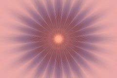 Kwiatu wzoru kwiecisty r??owy kalejdoskop dekoruje ilustracja wektor