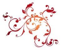 kwiatu wzoru winogrady Obraz Royalty Free
