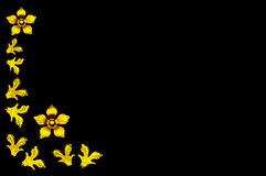 kwiatu złoty ramowy Obraz Royalty Free