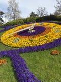 Kwiatu zegar w Geneve Duży kontrast zdjęcie stock
