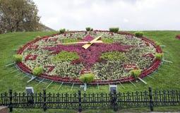 Kwiatu zegar w Wrześniu Obrazy Royalty Free