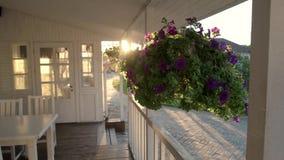 Kwiatu zrozumienie na ganeczku zdjęcie wideo