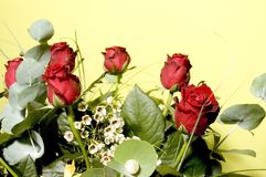 Kwiaty 6 Zdjęcia Royalty Free