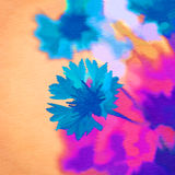 Kwiaty abstrakcjonistycznego tła składu daemon ciemna cyfrowa fantazi potwora obrazu kwadrata tematu błyszczka Zdjęcia Royalty Free