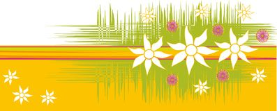 kwiaty australijskich tło Fotografia Stock