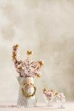 kwiaty azalii blisko dof płytkie pojawi się kwiat Obrazy Stock