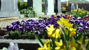 Kwiaty cmentarz W tle może widzieć doniosły kamień W tle jest kościół Kamera ruch along zbiory