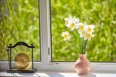 Kwiaty, daffodils na okno, Obraz Royalty Free