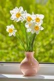 Kwiaty, daffodils na okno, Zdjęcie Royalty Free