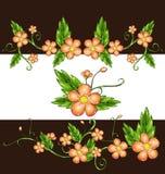 kwiaty delikatni Fotografia Stock