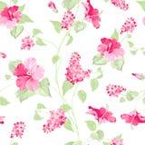 kwiaty deseniują bezszwowego Obrazy Stock