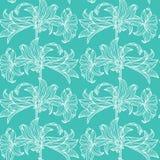 kwiaty deseniują bezszwowego wektor deseniowy błękit biel Fotografia Royalty Free