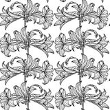 kwiaty deseniują bezszwowego wektor czarny white wzoru Obraz Royalty Free