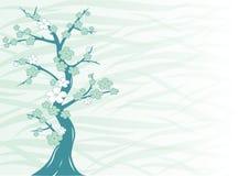 kwiaty drzewo wiśniowe ilustracja wektor