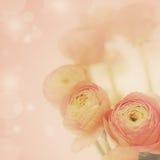 kwiaty fractal tła piękny obraz Fotografia Stock