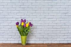 Kwiaty i ściana Zdjęcia Stock
