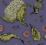 Kwiaty i liść Pociągany ręcznie wzór Fotografia Stock