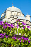 Kwiaty i meczet Obrazy Stock