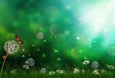 Kwiaty i motyle w ranku ilustracja wektor