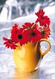 Kwiaty i prezenty Zdjęcia Royalty Free