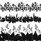 Kwiaty i trawy sylwetka, ustawiają bezszwowego Zdjęcia Stock