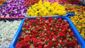 Kwiaty India zdjęcia stock