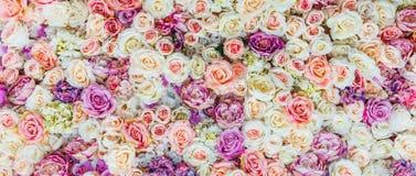 Kwiaty izolują tło z zadziwiającymi czerwonymi i białymi różami, Ślubna dekoracja, ręcznie robiony obrazy royalty free