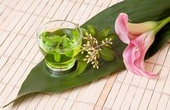 kwiaty kalia zielonej herbaty Fotografia Stock