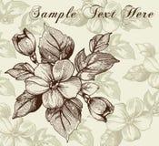 Kwiaty. Kartka z pozdrowieniami z kwiatu ornamentem. Obraz Royalty Free