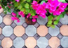 Kwiaty, koloru tło Obrazy Royalty Free