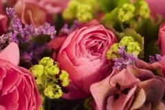 Kwiaty, kwiat, kwiatu przygotowania, kwiatu przygotowania, granica, obraz royalty free