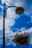 kwiaty lampową ulicę Fotografia Royalty Free