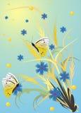 kwiaty motyla kolce Zdjęcie Stock