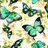Kwiaty, motyle, ręka pisać teksta notatka akwarela bezszwowy wzoru Zdjęcie Stock