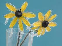 kwiaty, mrożone Obraz Stock
