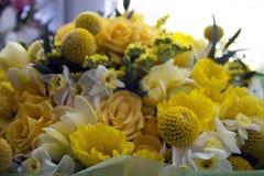 Kwiaty na nadokiennej fotografii Zdjęcia Stock