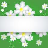 Kwiaty na papierowym tle Zdjęcia Royalty Free