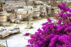 Kwiaty na ruinach biblioteka Hadrian, Ateny Zdjęcie Royalty Free